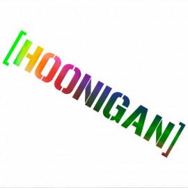 Hoonigan wss