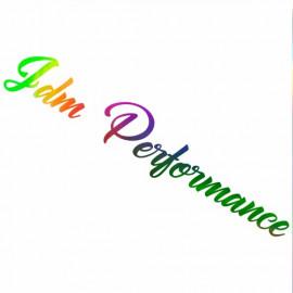 Jdm Performance wss