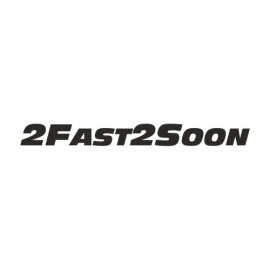 2 Fast 2 soon Paul Walker