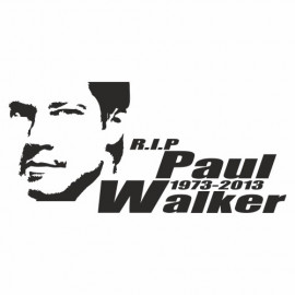 Rip Paul Walker Portrait