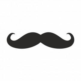 Cruising Mustache Drift Bart