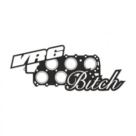 Vr6 Bitch