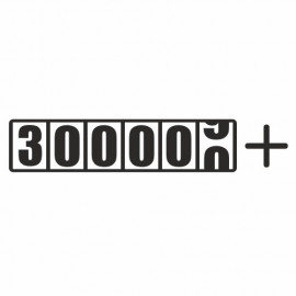 + 300000